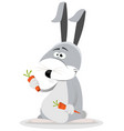 cartoon rabbit eating carrot vector image