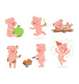 funny pink pigs playing games vector image vector image