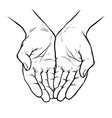 hands cupped together sketch vector image vector image