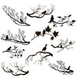 set birds at tree branches silhouettes vector image vector image