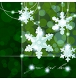 snowflake ornaments vector image