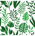tropic palm green leaves pattern vector image vector image
