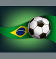 with soccet ball and flag of brazil vector image