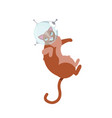 funny cats astronauts in space isolated on the vector image