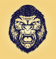 head angry gorilla isolated vector image