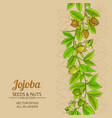 jojoba branches pattern on color background vector image