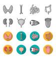 kidney bladder eyeball tongue human organs set vector image vector image