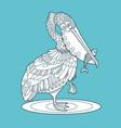 pelican bird with fish color vector image vector image