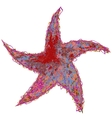 Star Color Grunge Original vector image vector image