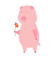 a pig domestic animal vector image vector image