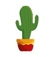 cactus in pot icon vector image