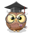 clever owl with pencil and in graduation cap vector image vector image