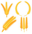 colorful cartoon ripe wheat ear set vector image vector image