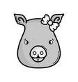 grayscale cute pig female wild animal vector image vector image