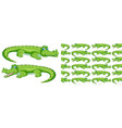 seamless background design with green crocodile vector image vector image