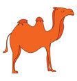 silhouette of a camel or color vector image vector image