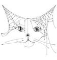 spider web shape silhouette cat head symbol vector image