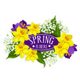 spring holiday poster of daffodils bouquet vector image vector image