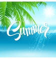 Summer holidays background with palm vector image vector image