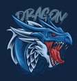 blue dragon head vector image
