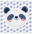 cute panda face flowers decoration background vector image