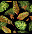 tropial leaves pattern vector image vector image