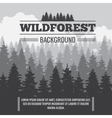 Wild coniferous pine forest outdoor nature vector image vector image