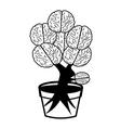 brain in pot vector image vector image