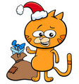 Kitten on christmas time cartoon vector image