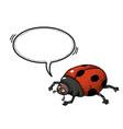 ladybug-100 vector image vector image
