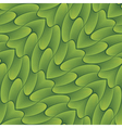 leaves background vector image vector image