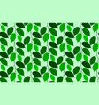 liana leaves pattern seamless on green background vector image