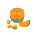 pumpkin whole cut halloween shabby vector image vector image