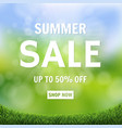 sale banner green nature bokeh with green grass vector image