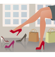 shopping shoes vector image