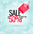 winter sale banner original poster for discount vector image vector image