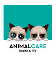 animal care hospital concept pet care vector image vector image