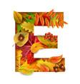 autumn stylized alphabet letter e vector image vector image