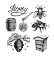Honey vintage set vector image