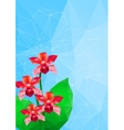orchid polygonal style vector image