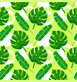palm leaves pattern grunge circles vector image vector image