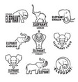 stylized of elephants templates for vector image vector image