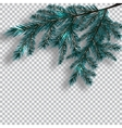 Two blue realistic branch of tree on background vector image vector image