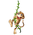 A monkey hanging on a vine vector image