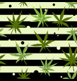 cannabis seamless pattern with marijuana leaves vector image vector image