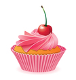 pink cupcake with red cherry vector image vector image