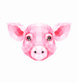polygonal of pig vector image vector image