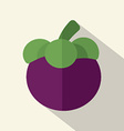 Flat Design Mangosteen Icon vector image
