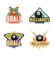 Billiards pool and snooker sport icons vector image