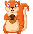 cartoon squirrel holding nut vector image vector image